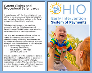 System of Payments Brochure
